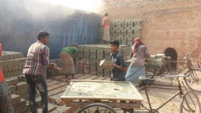 জামালপুর উপজেলাগুলোতে সনদ বিহীন ইটভাটায় চলছে শিশুশ্রম