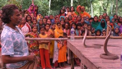এবারও ঝিনাইদহে গ্রাম বাংলার ঐহিত্যবাহী ঝাপান খেলা অনুষ্ঠিত
