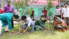 ফরিদপুরে মুজিব বর্ষ উপলক্ষে ছাত্রলীগের বৃক্ষ রোপন