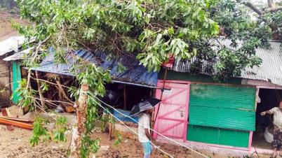 মাটিরাঙ্গায় অর্ধশত বছরের পুরনো গাছ ভেঙ্গে দোকান-ঘর বিধ্বস্থ
