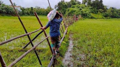 মহালছড়ির নোয়াপাড়া গ্রামবাসীদের যোগাযোগের একমাত্র পথ বাঁশের সাঁকো