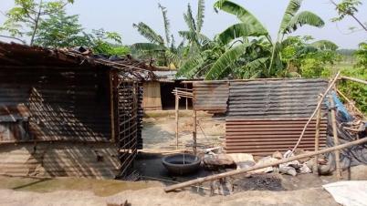 ঝিনাইদহে মেয়েকে উত্যক্ত করার প্রতিবাদ করায় গ্রাম ছাড়া পরিবার