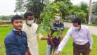 জাককানইবি'তে বিশ্ববিদ্যালয় সাংবাদিক সমিতির বৃক্ষরোপণ কর্মসূচি