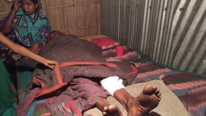 পাঁচবিবি সীমান্তে বিজিবির হামলায় মুক্তিযোদ্ধার স্ত্রী আহত