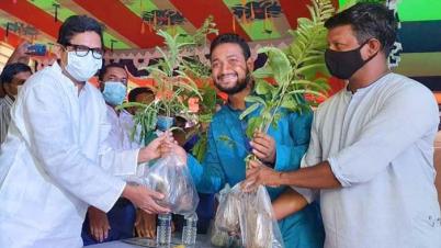 জলবায়ু পরিবর্তন মোকাবিলায় বৃক্ষরোপণে গুরুত্ব দিয়েছে সরকার-পলক