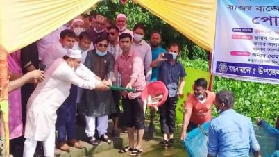 জাতীয় মৎস্য সপ্তাহ উপলক্ষে শিবপুরে পোনামাছ অবমুক্ত কার্যক্রম অনুষ্ঠিত