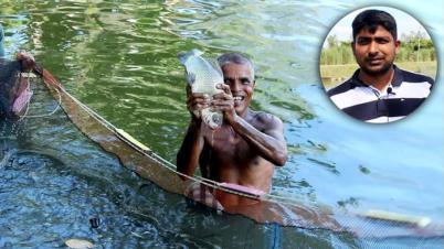 ঠাকুরগাঁওয়ে মাছ চাষে সফল ইফতেখারুল