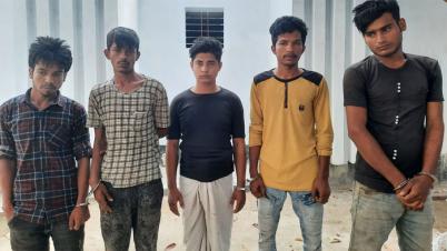 ব্রাহ্মণবাড়িয়ায় তাণ্ডব : নতুন ১২জনসহ ৩১০ জন গ্রেপ্তার