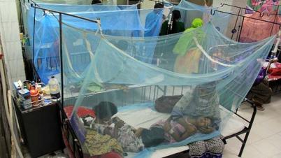 ডেঙ্গু আক্রান্ত হয়ে আরও ২৫৮ জন হাসপাতালে