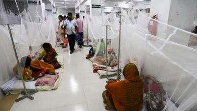 ২৪ ঘণ্টায় আরও ২৭৫ ডেঙ্গু রোগী হাসপাতালে ভর্তি