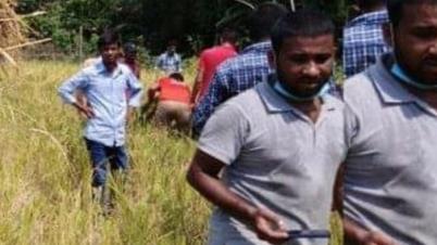 বিনা পারিশ্রমিকে কৃষকের ধান কেটে দিলো জেলা ছাত্রলীগ