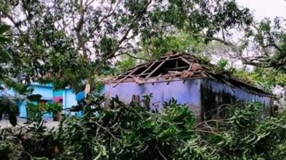 ঘূর্ণিঝড় আম্পানে যশোরে ১২ জনের মৃত্যু