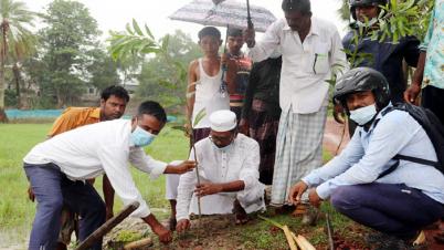 কলাপাড়ায় উপকূলে বৃক্ষ রোপন কর্মসুচী শুরু