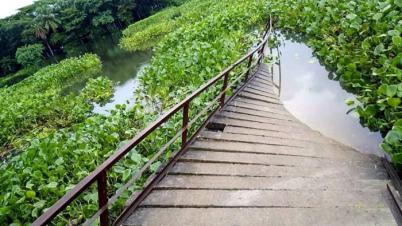 কলাপাড়ায় আয়রন ব্রিজ ভেঙ্গে নদীতে দূর্ভোগে কয়েক গ্রামের মানুষ