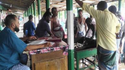 রায়পুরের মাছঘাটে চাঁদাবাজী, ক্ষতিগ্রস্ত পাইকাররা