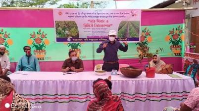 মির্জাগঞ্জে বারি মুগডালের 'মাঠ দিবস ও রিভিউ ডিসকাশন' সভা অনুষ্ঠিত