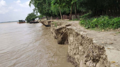 টাঙ্গাইলে ঝিনাই নদীর ভাঙন আতঙ্কে ৫ শতাধিক পরিবার