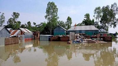সিরাজগঞ্জে যমুনা নদীর পানি বৃদ্ধি পেয়েছে