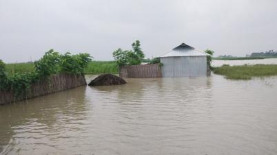 সুন্দরগঞ্জে তিস্তার পানি আরও বৃদ্ধি